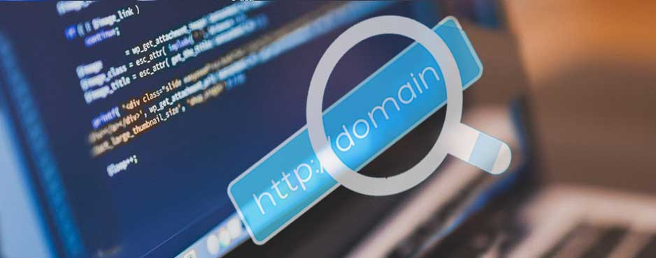 SEO Friendly Domain name search and registration and hosting websites